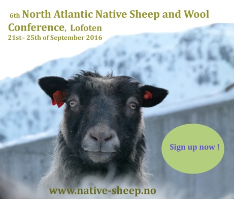 flyer NATIVE SHEEP-sign up
